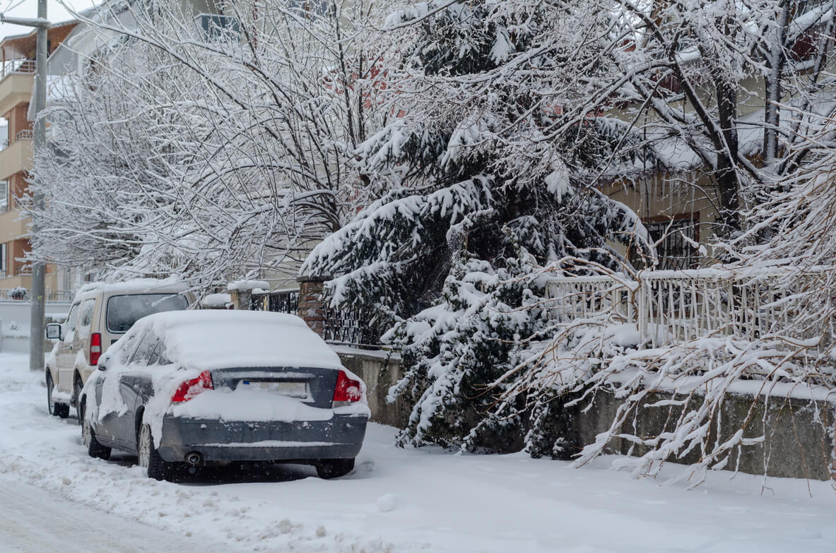 learn how to winterize a car